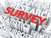 Survey Concept. — Stock Photo