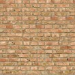 Brick Wall Texture. — Stock Photo #21297983