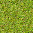 Stock Photo: Green Grass. Seamless Texture.