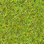 grünes Gras. nahtlose Textur — Stockfoto