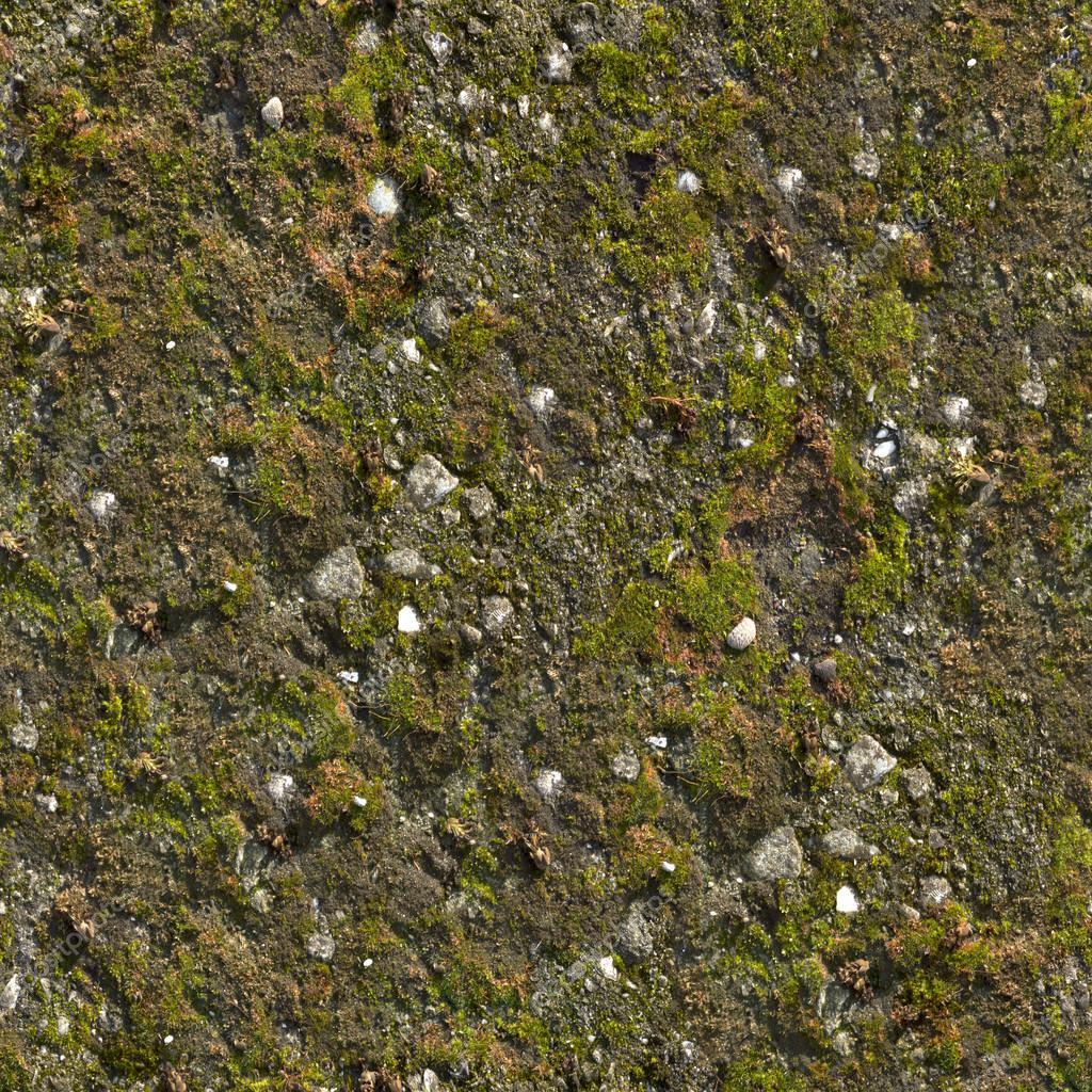 Seamless Moss Texture Mossy wall seamless texture. Seamless Moss Rock Texture