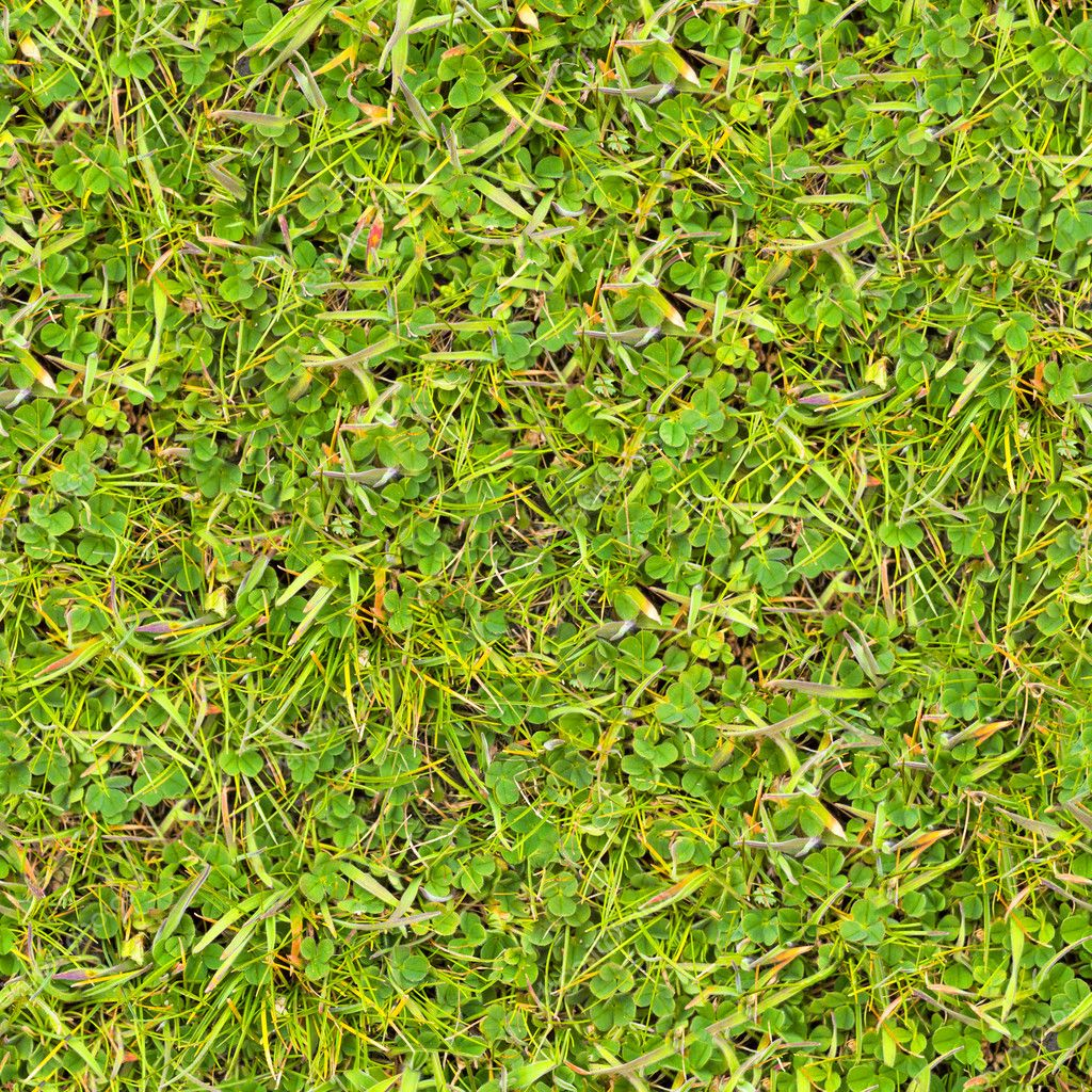 Download green grass seamless texture stock image 22588455
