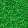 Green Meadow Grass. Seamless Texture. — Stock Photo