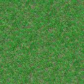 Forest Soil. Seamless Texture. — Stock Photo