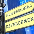 Business Concept. Professional Development Sign. - Stock Photo