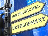 Business Concept. Professional Development Sign. — Stock Photo