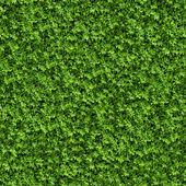 Green Bush. Seamless Texture. — Stock Photo