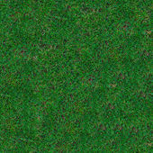 Grass. Seamless Texture. — Stock Photo