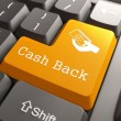 Keyboard with Cash Back Button. — Stock Photo #27007259