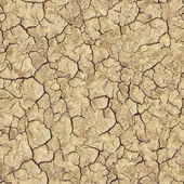 Cracked Brown Soil. Seamless Texture. — Stock Photo
