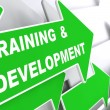 Training and Development. Education Concept. — Stock Photo