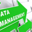 Data Management. Internet Concept. — Stockfoto