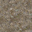 Seamless Texture of Rocky Steppe Soil. — Stock Photo