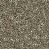 Seamless Texture of Steppe Soil. — Stock Photo