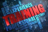 Training. Wordcloud Concept. — Stock Photo