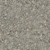 Seamless Texture of Wet Dirt Country Road. — Stock Photo
