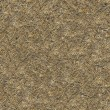 Seamless Texture of  Withered Grass. — Stock Photo