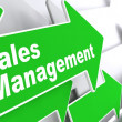 Sales Management. Business Concept. — Stock Photo
