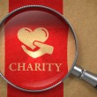 Charity Concept. — Stock Photo