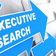 Stock Photo: Executive Search. Business Background.