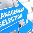Management Selection. Business Background. — Foto de Stock