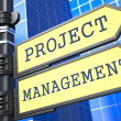 Project Management. Business Concept. — Photo