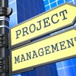 Project Management. Business Concept. — Stockfoto