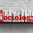 Stock Photo: Sociology. Education Concept.