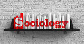 Sociology. Education Concept. — Stock Photo