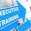 Executive Training on Blue Arrow. — Stock Photo