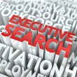 Stock Photo: Executive Search. Wordcloud Concept.