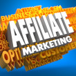 Affiliate Marketing. Wordcloud Concept. — Stock Photo