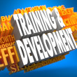 Training and Development. Wordcloud Concept. — Stock Photo