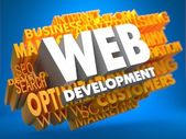 Web Development. Wordcloud Concept. — Stock Photo