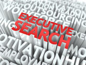 Executive Search. Wordcloud Concept. — Stock Photo