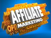 Affiliate Marketing. Wordcloud Concept. — Stock Photo