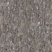 Pine Bark. Seamless Tileable Texture. — Stock Photo