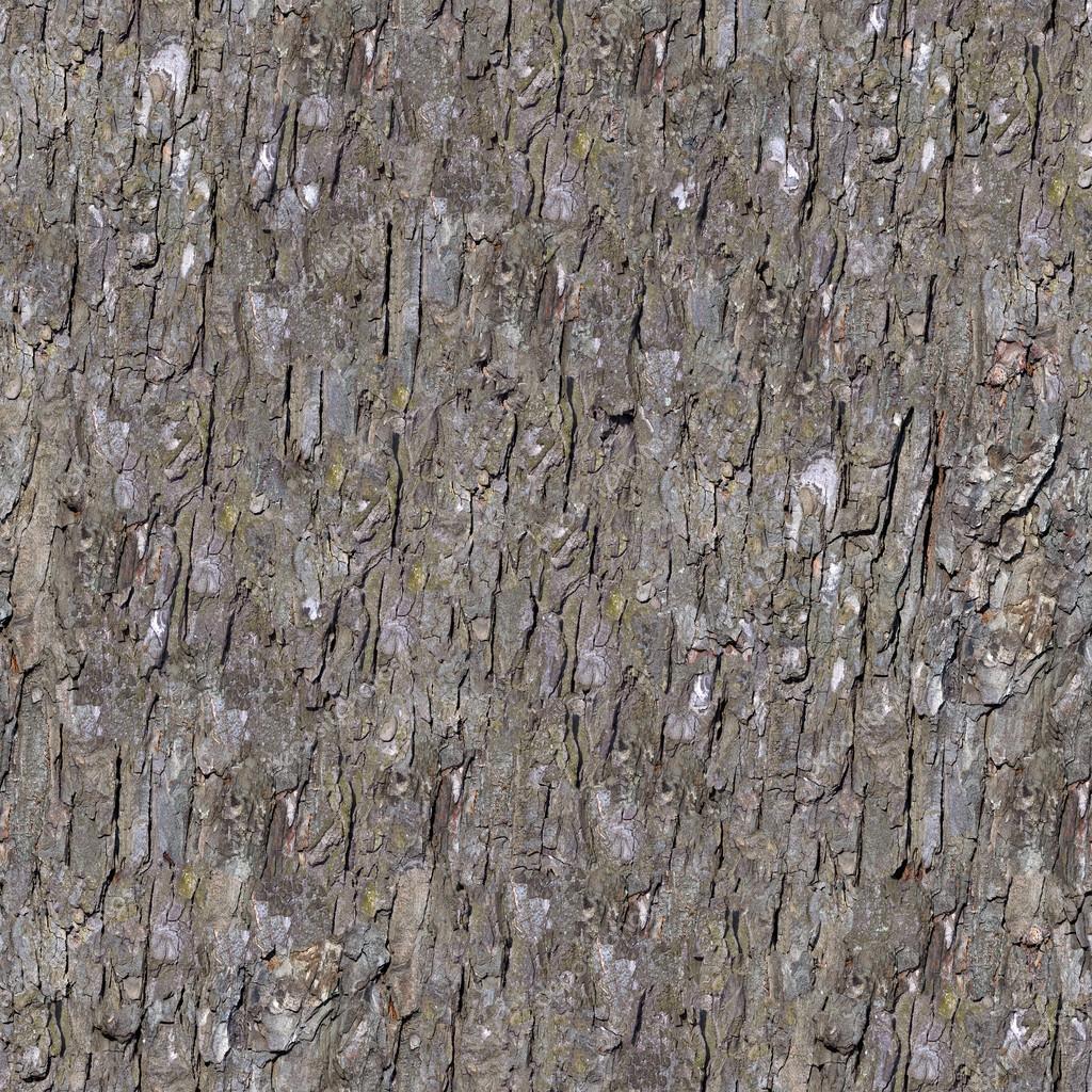 roman reigns hd wallpaper galaxy