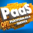 Stock Photo: PAAS. Wordcloud Concept.