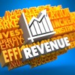 Revenue. Wordcloud Concept. — Stock Photo
