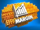 Margin. Wordcloud Concept. — Stock Photo