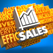 Sales Growth. Wordcloud Concept. — Stock Photo
