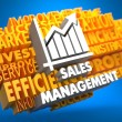 Sales Management. Wordcloud Concept. — Stock Photo