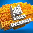 Sales Increase. Wordcloud Concept. — Stock Photo