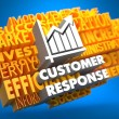 Stock Photo: Customer Response. Wordcloud Concept.