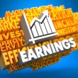 Earnings. Wordcloud Concept. — Stock Photo