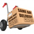Same Day Delivery - Cardboard Box on Hand Truck. — Stock Photo