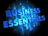 Business Essentials on Digital Background. — Foto Stock