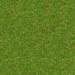 Green Meadow Grass. Seamless Texture. — Foto Stock