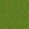 Green Meadow Grass. Seamless Texture. — 图库照片